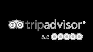 Our Tripadvisor reviews